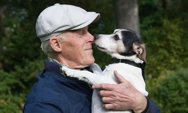 jack-russell-and-elderly-man