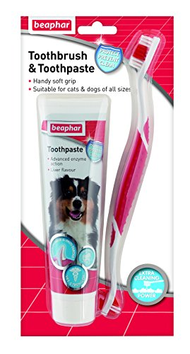 dog toothpaste reviews