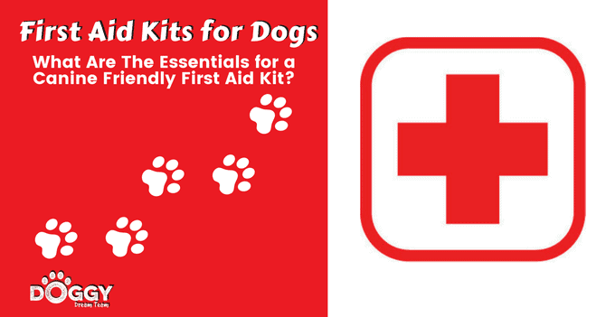 Dog first aid kit hero image