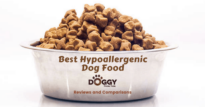 Best Hypoallergenic Dog Food for UK Dog Owners  (2019 Product Reviews)