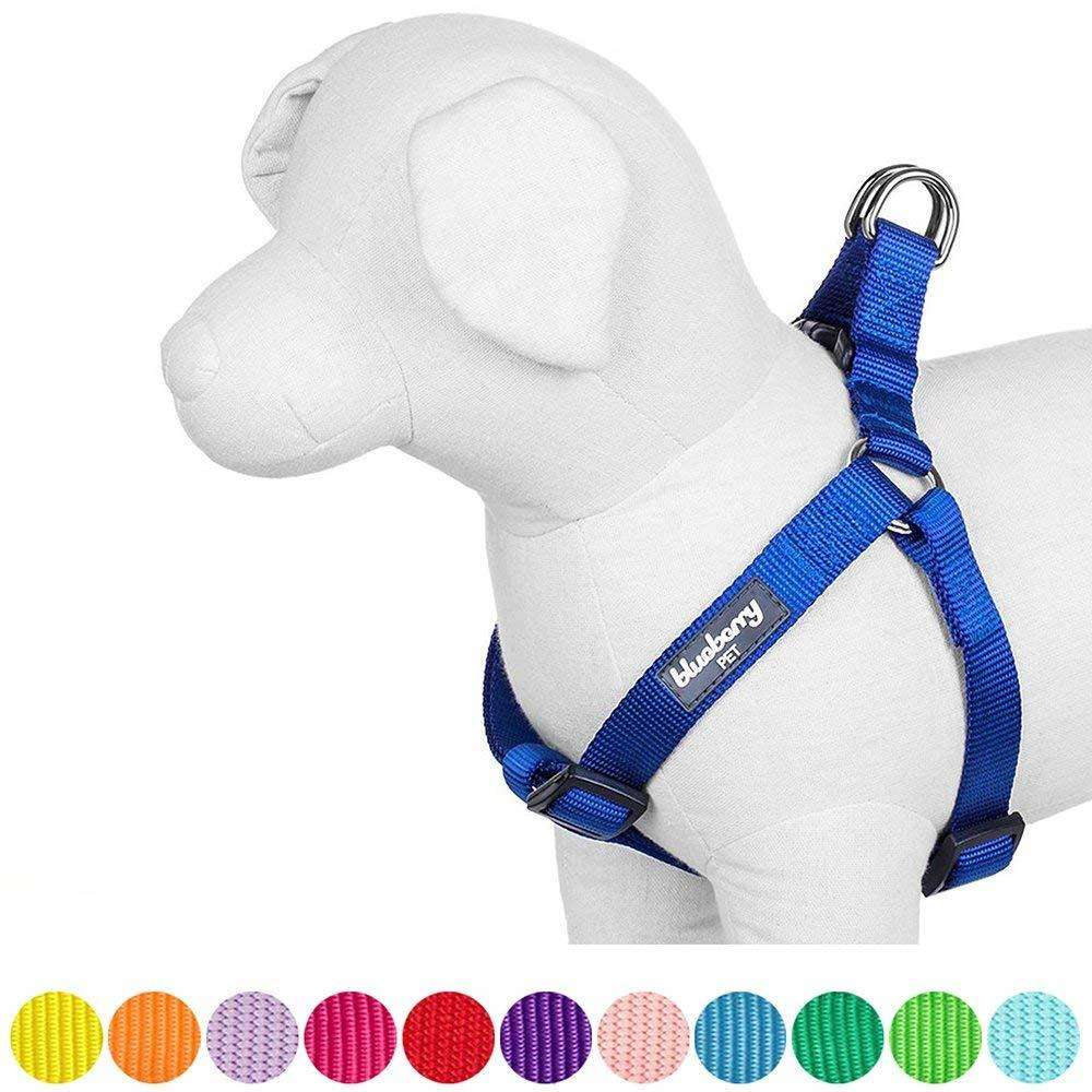 blueberry dog harness