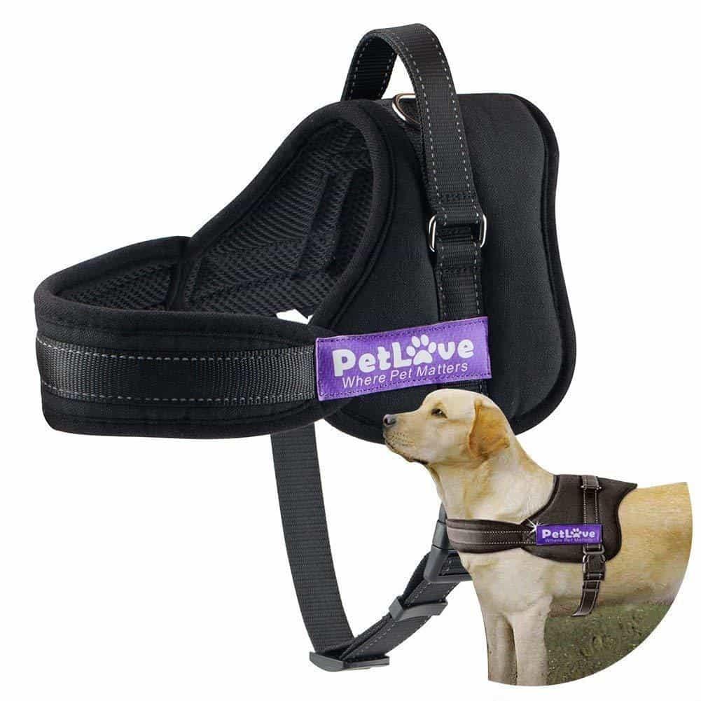 pet love dog harness