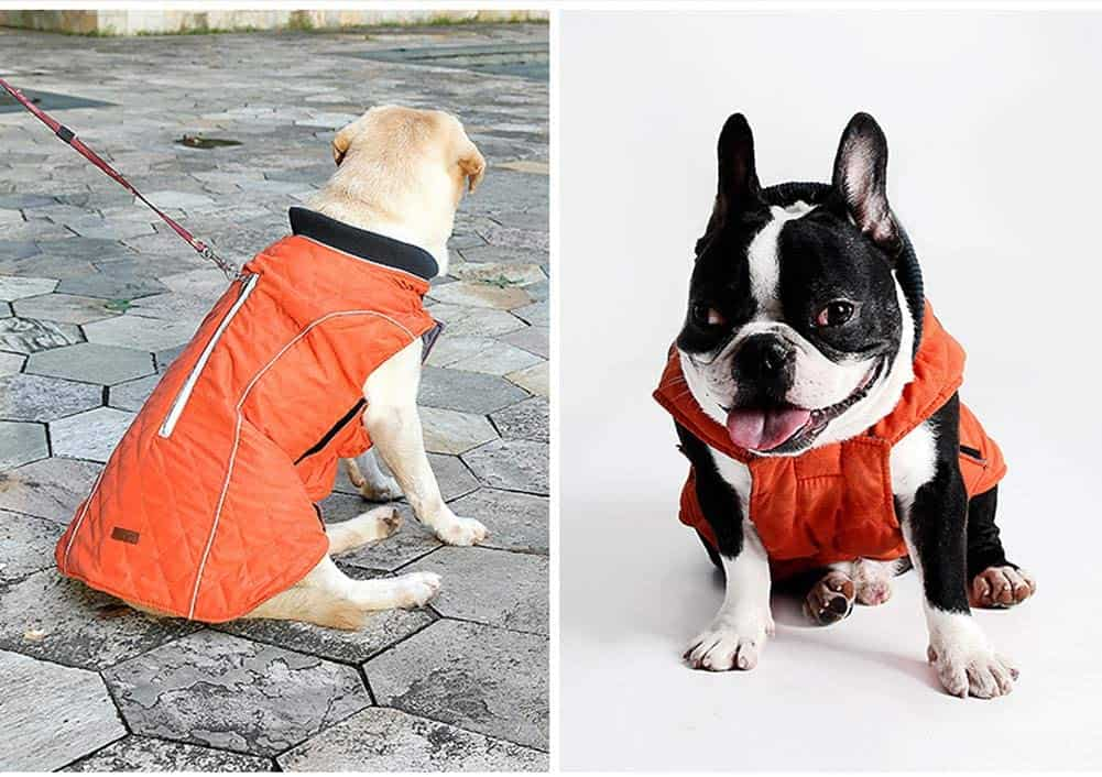waterproof dog coat uk