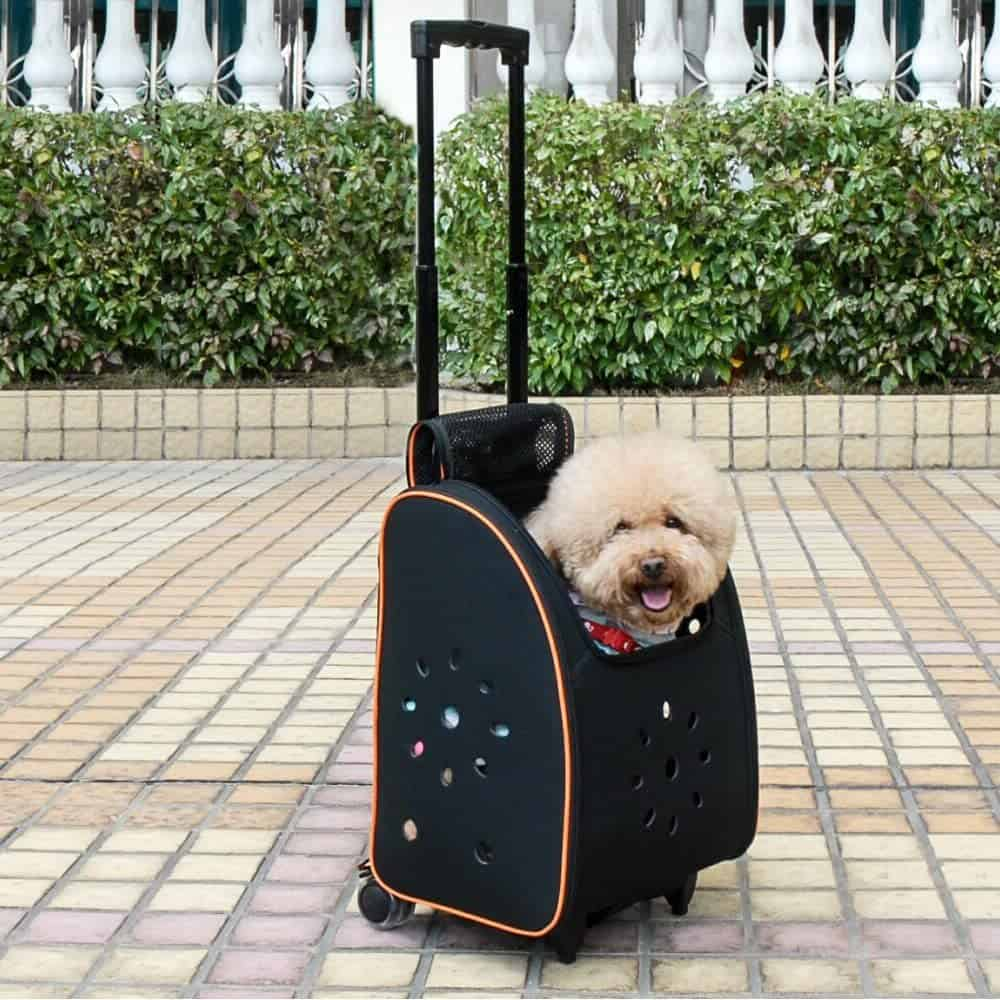 petsfit travel dog carrier